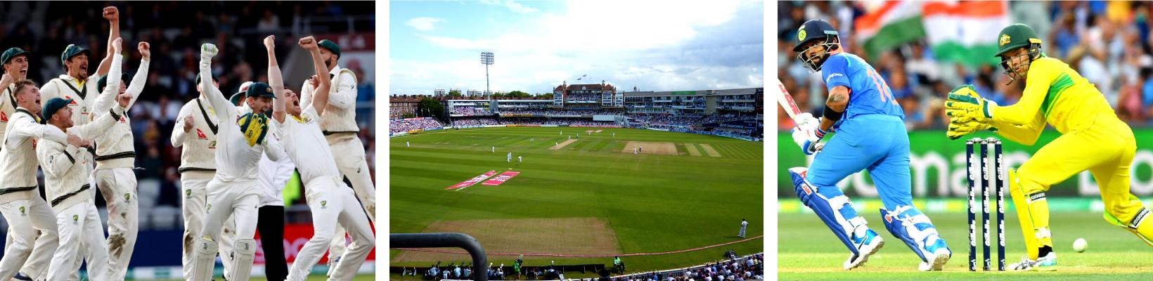 ASM Cricket