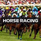 ASM HORSE RACING